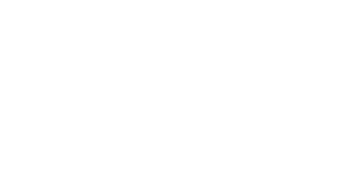Logo Steiraloab